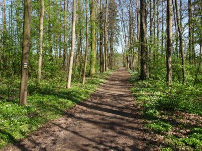 Park Bažantnice na okraji Lázně Bělohradu