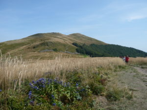 pohled na vrchol Smerek při sestupu