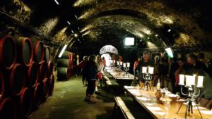 Degustace maďarských vín