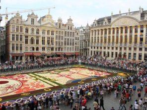 350 květinový koberec na náměstí (5)