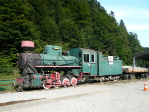 parní lokomotiva úzkorozchodné Bieszczadské dráhy