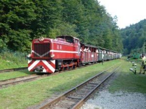 lokomotiva úzkorozchodné Bieszczadské dráhy v Majdanu