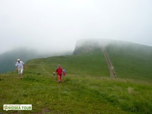 Krásná tráva na polonině u vrcholu Žandarm