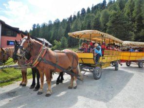 Koňský omnibusu do Pontresiny