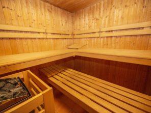 Hotel Na Jezeře Lipno - sauna