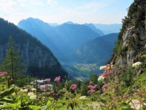 Výhled z hory Krippenstein