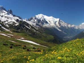Masiv Mont Blanc