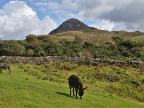 Národní park Connemara - Diamond Hill