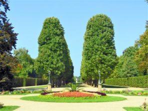 Pillnitz - zámecká park
