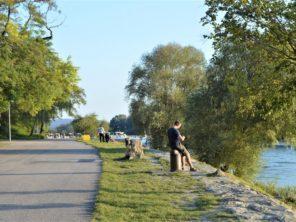 Stezka podél Dunaje