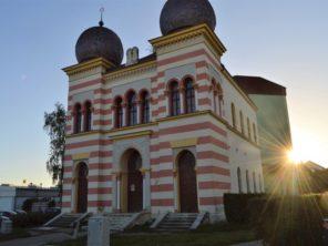 Synagoga v Malackách
