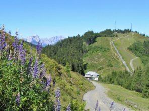 Turistika v Alpách