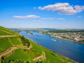 Vineyards and ruins near Rhine river, Bingen am Rhein, Rheinland-Pfalz, Germany