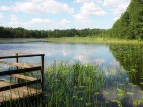 Wielkopolské jezero