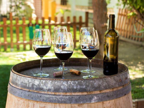 Zájezd víno