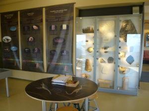muzeum zkamenělin s interaktivními částmi