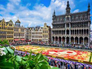 Květinový koberec - Brusel, Belgie